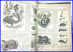 Johnson's New Illustrated Family Atlas of the world 1870 by Prof. A. Guyot